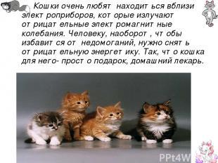 Кошки очень любят находиться вблизи электроприборов, которые излучают отрицатель