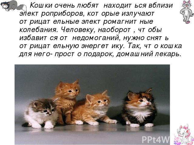 Кошки очень любят находиться вблизи электроприборов, которые излучают отрицательные электромагнитные колебания. Человеку, наоборот, чтобы избавится от недомоганий, нужно снять отрицательную энергетику. Так, что кошка для него- просто подарок, домашн…
