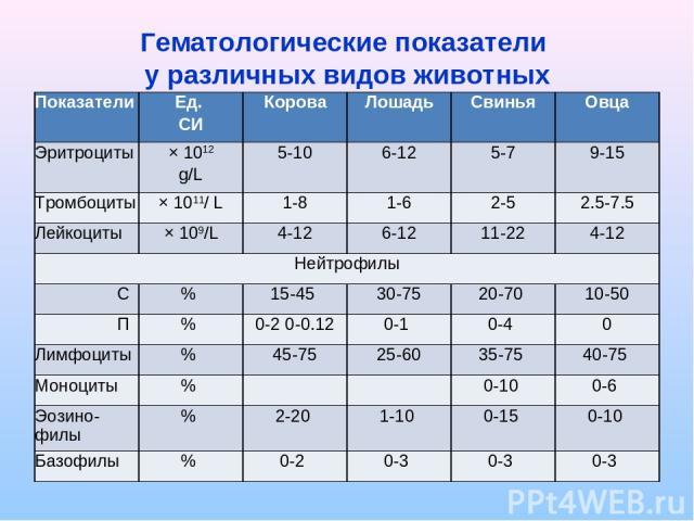 Гематологические показатели у различных видов животных Показатели Ед. СИ Корова Лошадь Свинья Овца Эритроциты × 1012 g/L 5-10 6-12 5-7 9-15 Тромбоциты × 1011/ L 1-8 1-6 2-5 2.5-7.5 Лейкоциты × 109/L 4-12 6-12 11-22 4-12 Нейтрофилы С % 15-45 30-75 20…