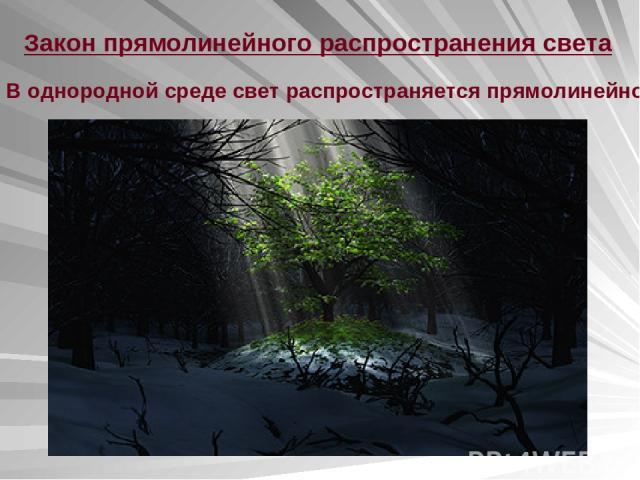 Закон прямолинейного распространения света В однородной среде свет распространяется прямолинейно