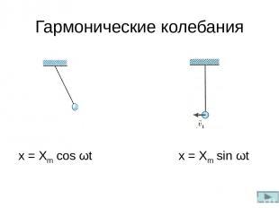 Гармонические колебания x = Xm cos ωt x = Xm sin ωt