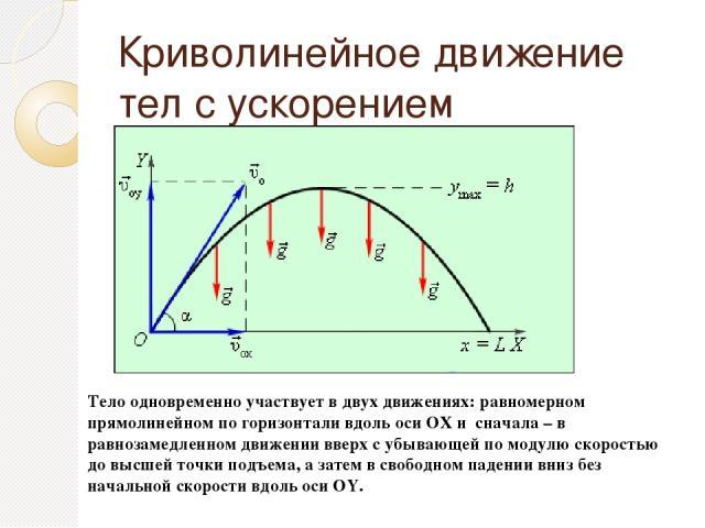 Криволинейное движение тел с ускорением свободного падения. Тело одновременно участвует в двух движениях: равномерном прямолинейном по горизонтали вдоль оси ОХ и сначала – в равнозамедленном движении вверх с убывающей по модулю скоростью до высшей т…