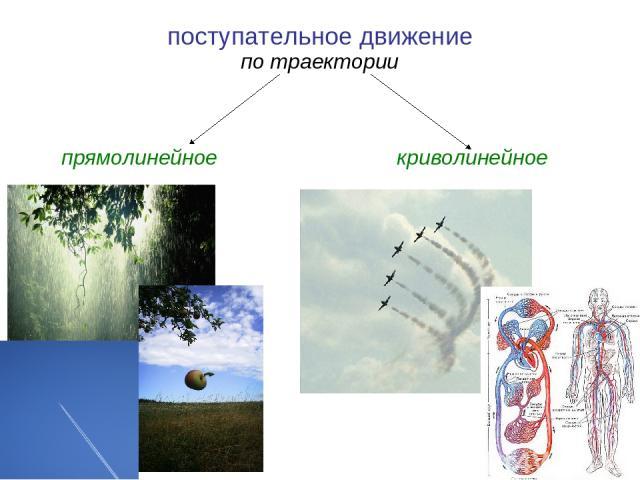 поступательное движение по траектории прямолинейное криволинейное