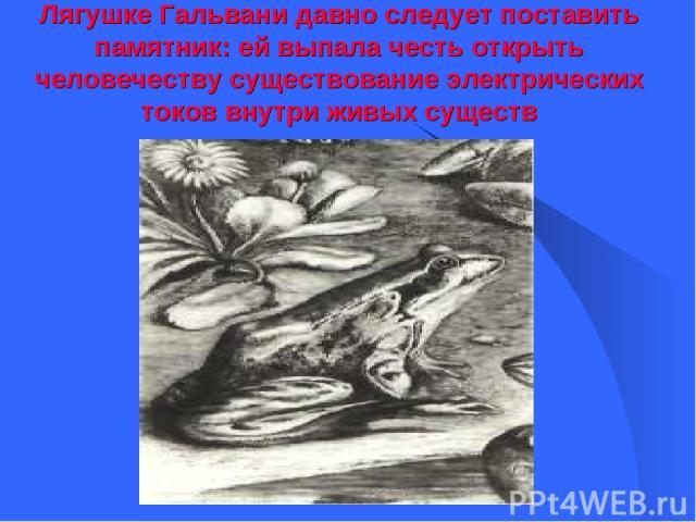 Лягушке Гальвани давно следует поставить памятник: ей выпала честь открыть человечеству существование электрических токов внутри живых существ