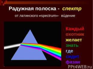* Радужная полоска - спектр от латинского «spectrum»- вúдение Каждый охотник жел