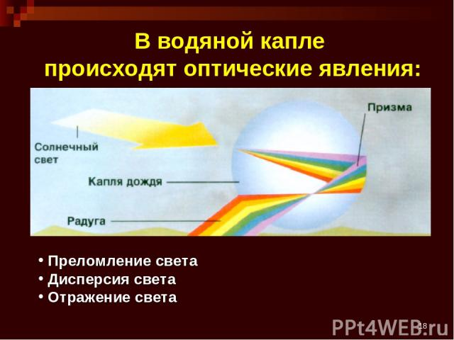 * В водяной капле происходят оптические явления: Преломление света Дисперсия света Отражение света