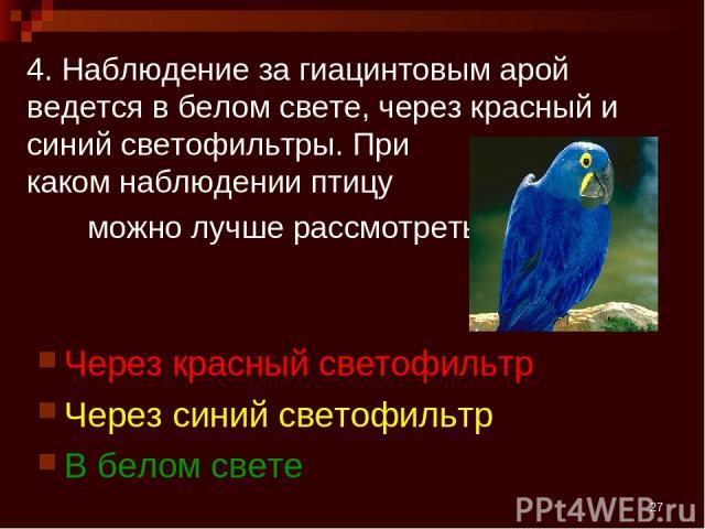 * 4. Наблюдение за гиацинтовым арой ведется в белом свете, через красный и синий светофильтры. При каком наблюдении птицу можно лучше рассмотреть? Через красный светофильтр Через синий светофильтр В белом свете