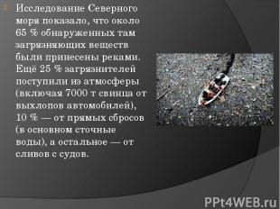 ИсследованиеСеверного моряпоказало, что около 65% обнаруженных там загрязняющ