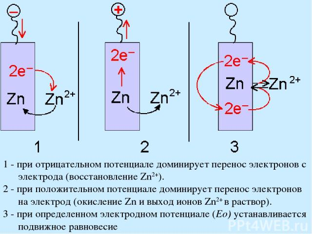 1 - при отрицательном потенциале доминирует перенос электронов с электрода (восстановление Zn2+). 2 - при положительном потенциале доминирует перенос электронов на электрод (окисление Zn и выход ионов Zn2+ в раствор). 3 - при определенном электродно…