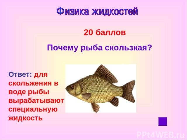 20 баллов Почему рыба скользкая? Ответ: для скольжения в воде рыбы вырабатывают специальную жидкость