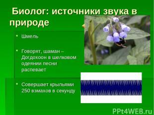 Биолог: источники звука в природе Шмель Говорят, шаман – Догдохоон в шелковом од