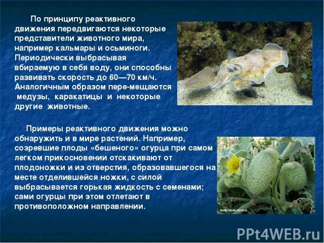 По принципу реактивного движения передвигаются некоторые представители животного мира, например кальмары и осьминоги. Периодически выбрасывая вбираемую в себя воду, они способны развивать скорость до 60—70 км/ч. Аналогичным образом пере мещаются мед…