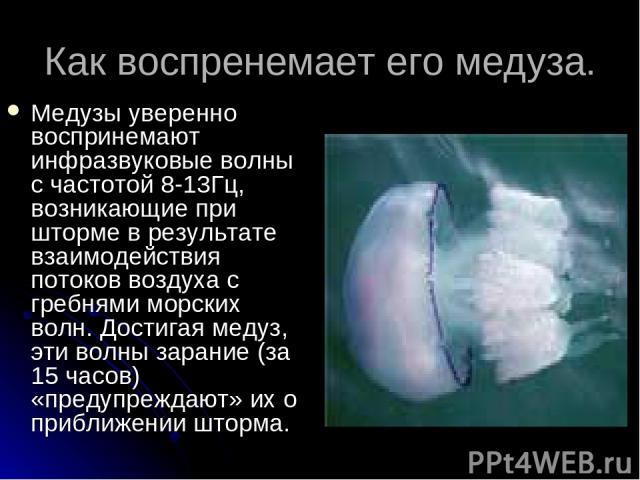 Как воспренемает его медуза. Медузы уверенно воспринемают инфразвуковые волны с частотой 8-13Гц, возникающие при шторме в результате взаимодействия потоков воздуха с гребнями морских волн. Достигая медуз, эти волны зарание (за 15 часов) «предупрежда…