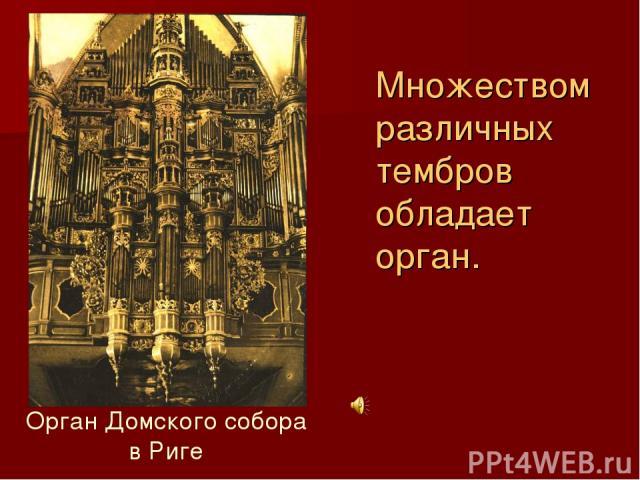Множеством различных тембров обладает орган. Орган Домского собора в Риге