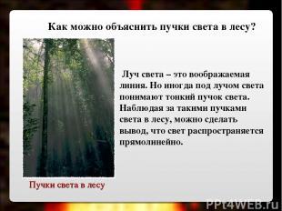 Пучки света в лесу Луч света – это воображаемая линия. Но иногда под лучом света