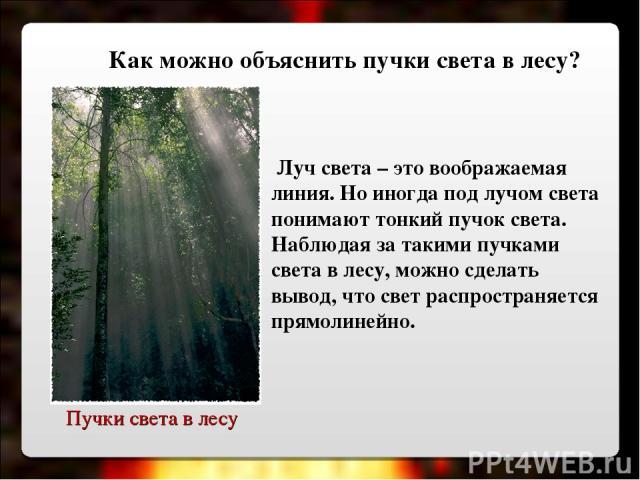 Пучки света в лесу Луч света – это воображаемая линия. Но иногда под лучом света понимают тонкий пучок света. Наблюдая за такими пучками света в лесу, можно сделать вывод, что свет распространяется прямолинейно. Как можно объяснить пучки света в лесу?