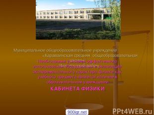 Муниципальное общеобразовательное учреждение «Караваинская средняя общеобразоват