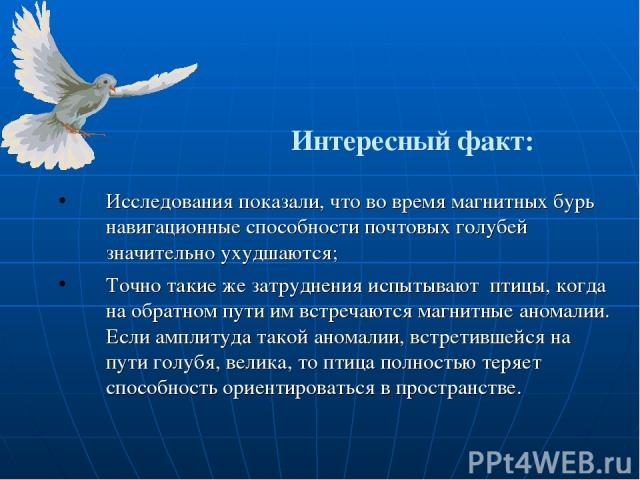 Интересный факт: Исследования показали, что во время магнитных бурь навигационные способности почтовых голубей значительно ухудшаются; Точно такие же затруднения испытывают птицы, когда на обратном пути им встречаются магнитные аномалии. Если амплит…