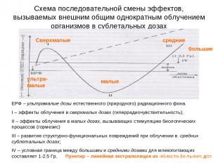 Схема последовательной смены эффектов, вызываемых внешним общим однократным облу