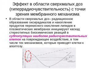 Эффект в области сверхмалых доз (гиперрадиочувствительность) с точки зрения мемб