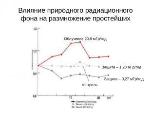 Влияние природного радиационного фона на размножение простейших Защита – 0,27 мГ