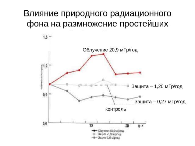 Влияние природного радиационного фона на размножение простейших Защита – 0,27 мГр/год Защита – 1,20 мГр/год Облучение 20,9 мГр/год контроль
