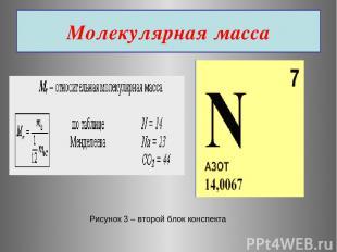 Молекулярная масса Рисунок 3 – второй блок конспекта