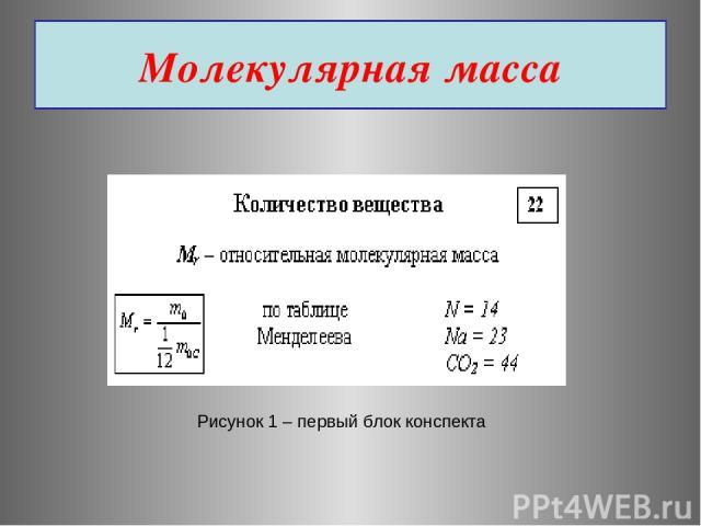 Молекулярная масса Рисунок 1 – первый блок конспекта