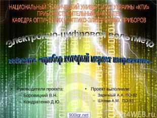 Руководители проекта: Боровицкий В.Н. Кондратенко Д.Ю. Проект выполнили: Заричны