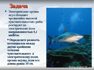 Задача Электрические органы акул обладают чрезвычайно высокой чувствительностью: