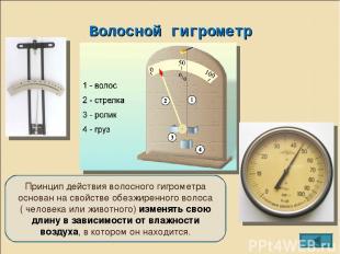 Волосной гигрометр Принцип действия волосного гигрометра основан на свойстве обе