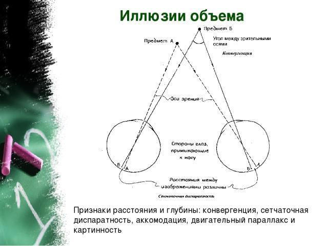 Иллюзии объема Признаки расстояния и глубины: конвергенция, сетчаточная диспаратность, аккомодация, двигательный параллакс и картинность