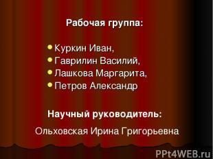 Рабочая группа: Куркин Иван, Гаврилин Василий, Лашкова Маргарита, Петров Алексан