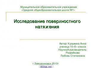 Муниципальное образовательное учреждение «Средняя общеобразовательная школа №1»