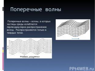 Поперечные волны Поперечные волны – волны, в которых частицы среды колеблются пе
