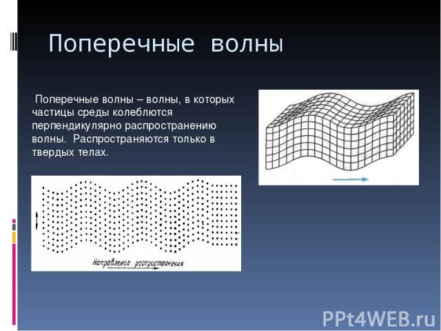 Поперечные волны Поперечные волны – волны, в которых частицы среды колеблются перпендикулярно распространению волны. Распространяются только в твердых телах.