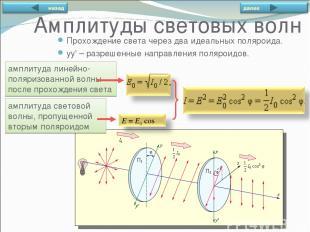 амплитуда линейно-поляризованной волны после прохождения света амплитуда светово