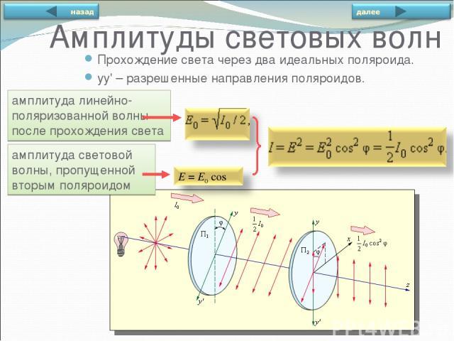 амплитуда линейно-поляризованной волны после прохождения света амплитуда световой волны, пропущенной вторым поляроидом Прохождение света через два идеальных поляроида. yy' – разрешенные направления поляроидов. Амплитуды световых волн