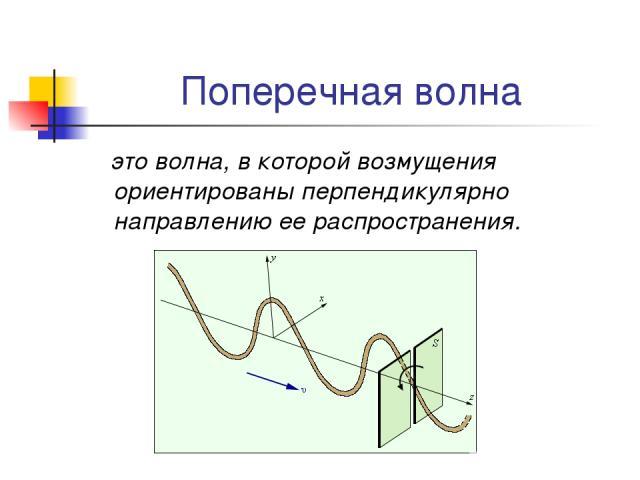 Поперечная волна это волна, в которой возмущения ориентированы перпендикулярно направлению ее распространения.