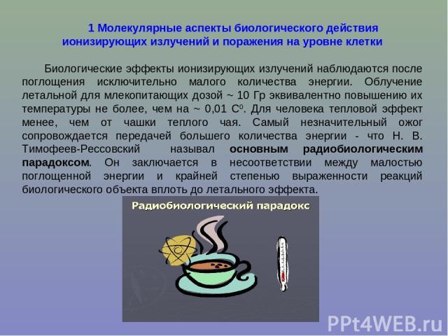 1 Молекулярные аспекты биологического действия ионизирующих излучений и поражения на уровне клетки Биологические эффекты ионизирующих излучений наблюдаются после поглощения исключительно малого количества энергии. Облучение летальной для млекопитающ…