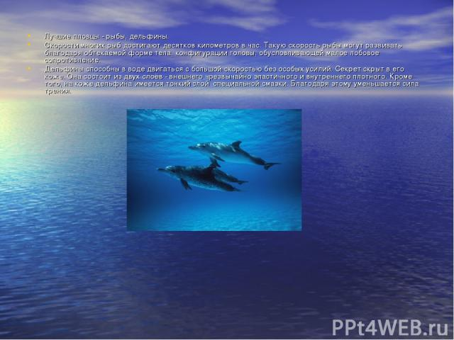 Лучшие пловцы - рыбы, дельфины. Скорости многих рыб достигают десятков километров в час. Такую скорость рыбы могут развивать благодаря обтекаемой форме тела, конфигурации головы, обусловливающей малое лобовое сопротивление. Дельфины способны в воде …
