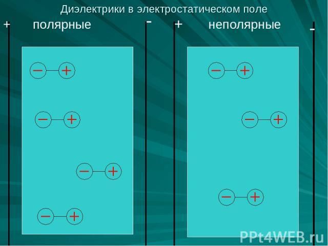 полярные неполярные + + - - Диэлектрики в электростатическом поле
