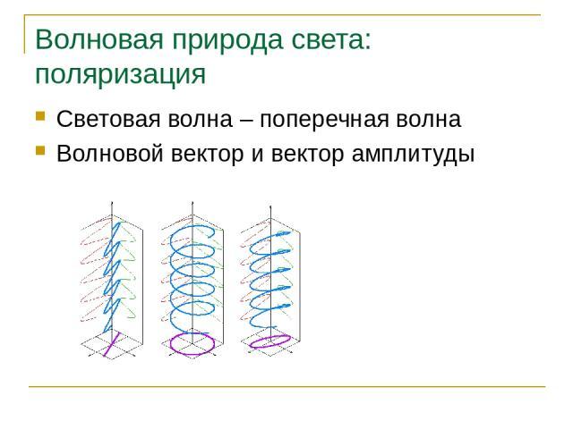 Волновая природа света: поляризация Световая волна – поперечная волна Волновой вектор и вектор амплитуды Основы синтеза изображений