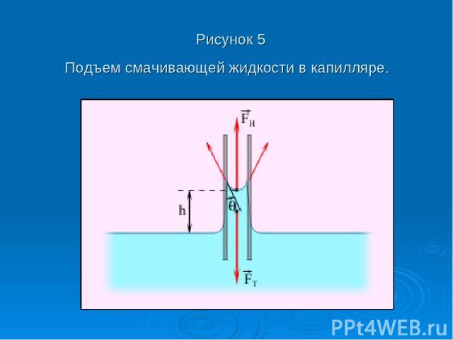 Рисунок 5 Подъем смачивающей жидкости в капилляре.