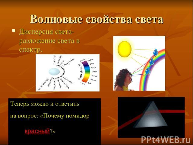 Волновые свойства света Дисперсия света- разложение света в спектр. Теперь можно и ответить на вопрос: «Почему помидор красный?»