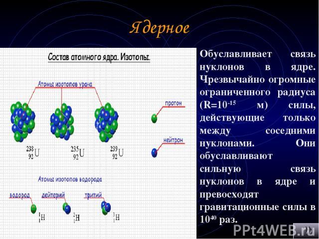 Ядерное Обуславливает связь нуклонов в ядре. Чрезвычайно огромные ограниченного радиуса (R=10-15 м) силы, действующие только между соседними нуклонами. Они обуславливают сильную связь нуклонов в ядре и превосходят гравитационные силы в 1040 раз.
