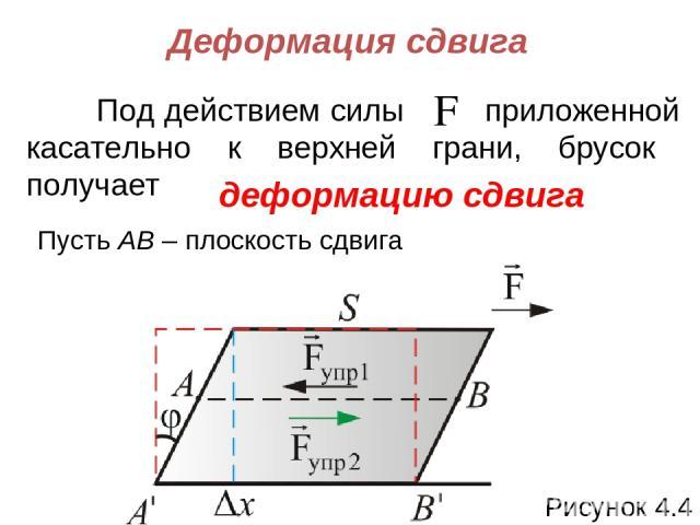 Деформация сдвига Под действием силы приложенной касательно к верхней грани, брусок получает деформацию сдвига Пусть АВ – плоскость сдвига Рисунок 4.4