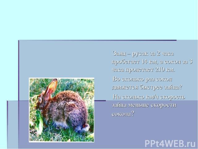 Заяц – русак за 2 часа пробегает 14 км, а сокол за 3 часа пролетает 210 км. Во сколько раз сокол движется быстрее зайца? На сколько км/ч скорость зайца меньше скорости сокола?