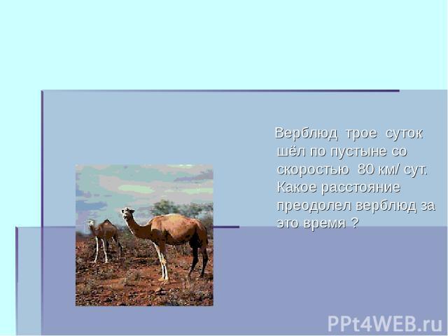 Верблюд трое суток шёл по пустыне со скоростью 80 км/ сут. Какое расстояние преодолел верблюд за это время ?