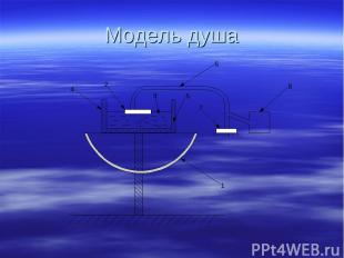 Модель душа